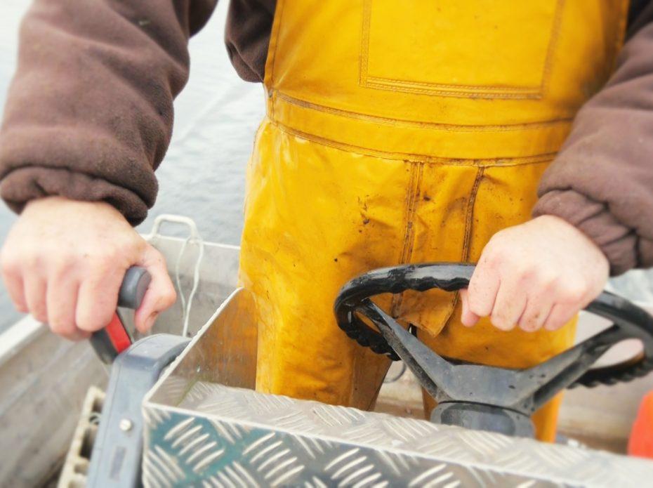 Une matinée de pêche sur la Dordogne